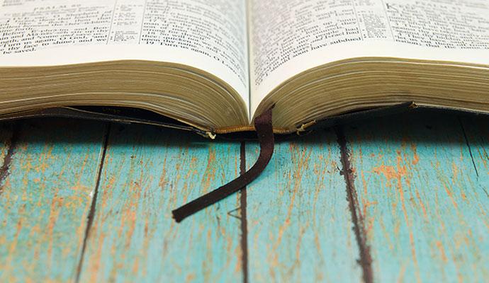Image result for evangelicalism